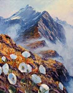 Mackinnon pass Milford Track fine art mountain daisies