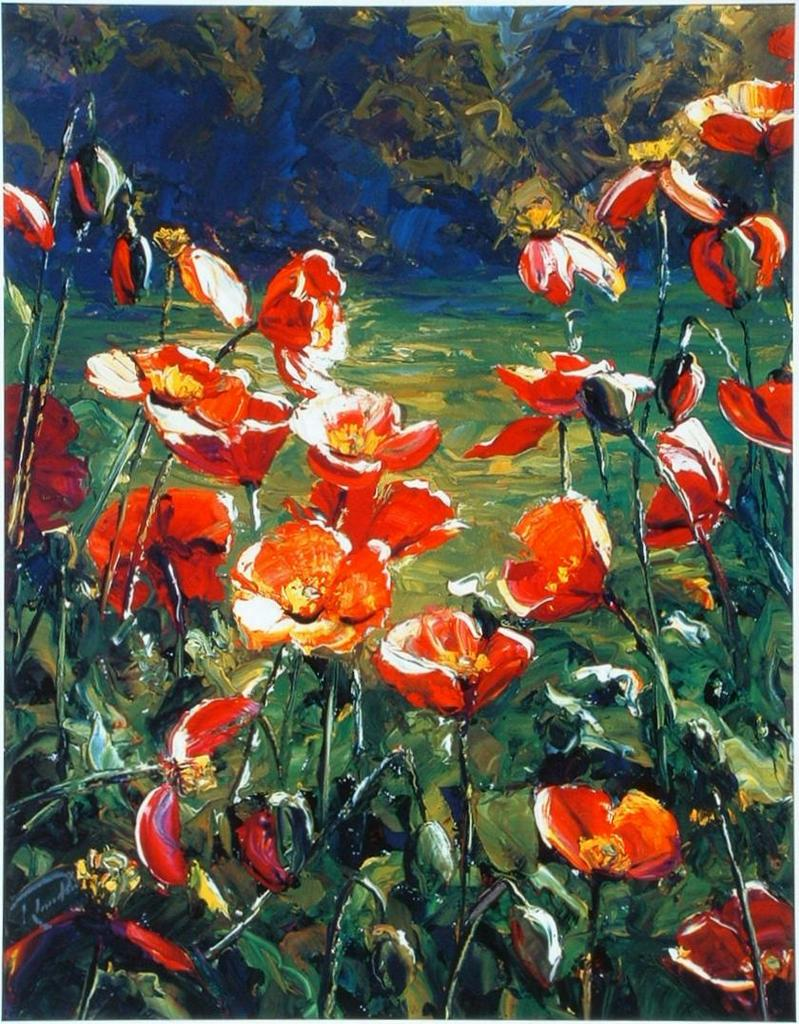 Evening Poppies Richard Ponder